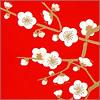 Цветы сакуры. Открыть в новом окне [37Kb]