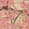 Цветы сливы. Открыть в новом окне [82Kb]