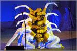 Народный коллектив эстрадного танца 'Жемчужинка'. Открыть в новом окне [62 Kb]