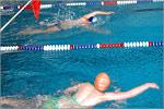 Соревнования по плаванию. Открыть в новом окне [85 Kb]
