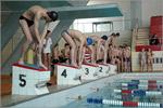 Соревнования по плаванию. Открыть в новом окне [77 Kb]