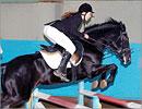 Новые победы в конном спорте. Открыть в новом окне [61 Kb]