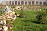 Презентация ботанического сада ОГУ. Открыть в новом окне [86Kb]