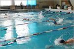 Соревнования по плаванию. Открыть в новом окне [87 Kb]