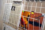 Книжная выставка Павла Рыкова 'Жизнь прекрасна!'. Открыть в новом окне [91 Kb]