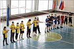 Соревнования по волейболу. Открыть в новом окне [97 Kb]