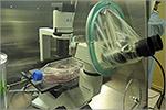 Работа клеточной станции. Открыть в новом окне [79 Kb]