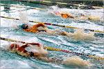 XXXVIтрадиционный турнир по плаванию 'Осенние старты'. Открыть в новом окне [82 Kb]
