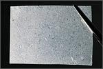 Биокожа — внешний вид. Открыть в новом окне [96 Kb]