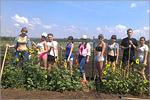 Практика студентов ХБФ в ботаническом саду . Открыть в новом окне [83 Kb]