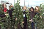 Посадка деревьев волонтерами. Открыть в новом окне [94 Kb]