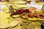 Осенний праздник в областном детском тубдиспансере. Открыть в новом окне [82 Kb]