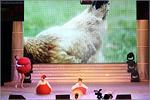 Гала-концерт фестиваля 'На Николаевской — 2014'. Открыть в новом окне [72 Kb]