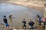 Студенты ФПБИ на практике в ООО 'Озерное'. Открыть в новом окне [77 Kb]