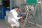 Мастер-класс на мясоперерабатывающем предприятии 'Мясная душа'. Открыть в новом окне [76 Kb]