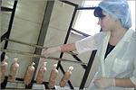 Защита дипломных работ студентов ФПБИ. Открыть в новом окне [72 Kb]