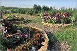 Ботанический сад ОГУ. Открыть в новом окне [74 Kb]