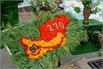 Торжественные мероприятия, посвященные 271-летию Оренбурга. Открыть в новом окне [73 Kb]