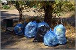 Уборка мусора на территории прибрежной зоны Урала. Открыть в новом окне [76 Kb]