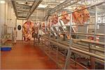 Экскурсия студентов ФПБИ на мясоперерабатывающий завод ORENBEEF. Открыть в новом окне [126 Kb]