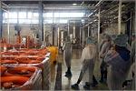 Экскурсия на Оренбургский пивоваренный завод «Крафт»