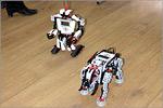 Лаборатория робототехники и технического творчества. Программируемые роботы. Открыть в новом окне [90Kb]