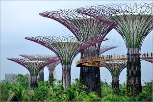 Направление подготовки «Дизайн архитектурной среды»